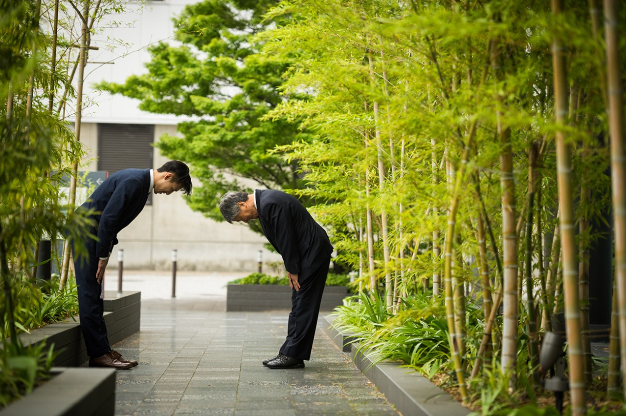 Japanese businessmen bowing in traditional Japanese customs used when greeting colleagues and formalizing deals, men, trees, greeting, two people, Asian